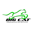 Big Cat Bike